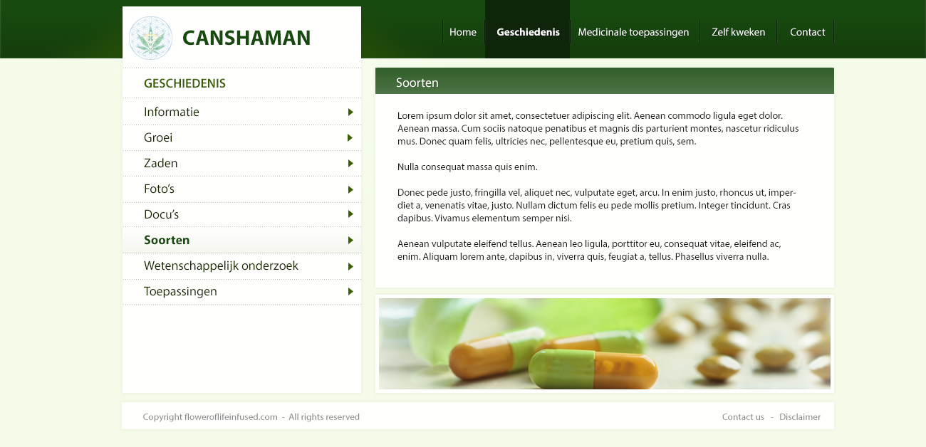 Website Canshaman.com